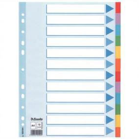 Regiszter, karton, A4, 12 részes, írható előlappal, ESSELTE