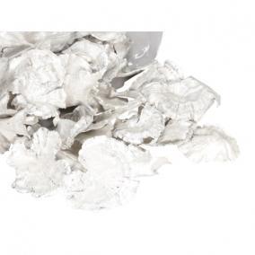 Gomba, fafül 250 gr fehér