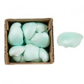 Kagyló dobozban 10 cm x 10 cm x 6cm türkíz