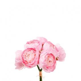 Selyemvirág Peonia csokor 7szálas 33cm rózsaszín