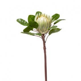 Selyemvirág óriás Protea 83cm zöld