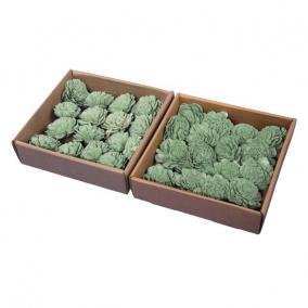 Száritott virágfej 5 cm türkisz kék,türkisz zöld 2 féle [16 db]