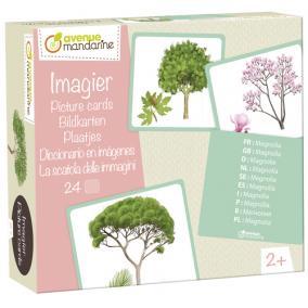 Avenue Mandarine JE525C Képes kártyák,fák