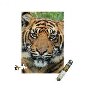 Mini puzzle - Tigris, 150 db